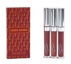 Kit Rouge à Lèvres Liquide - Lip Bundle - Hidden Agenda COLOURPOP