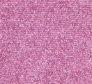 305 - Raspberry Tart